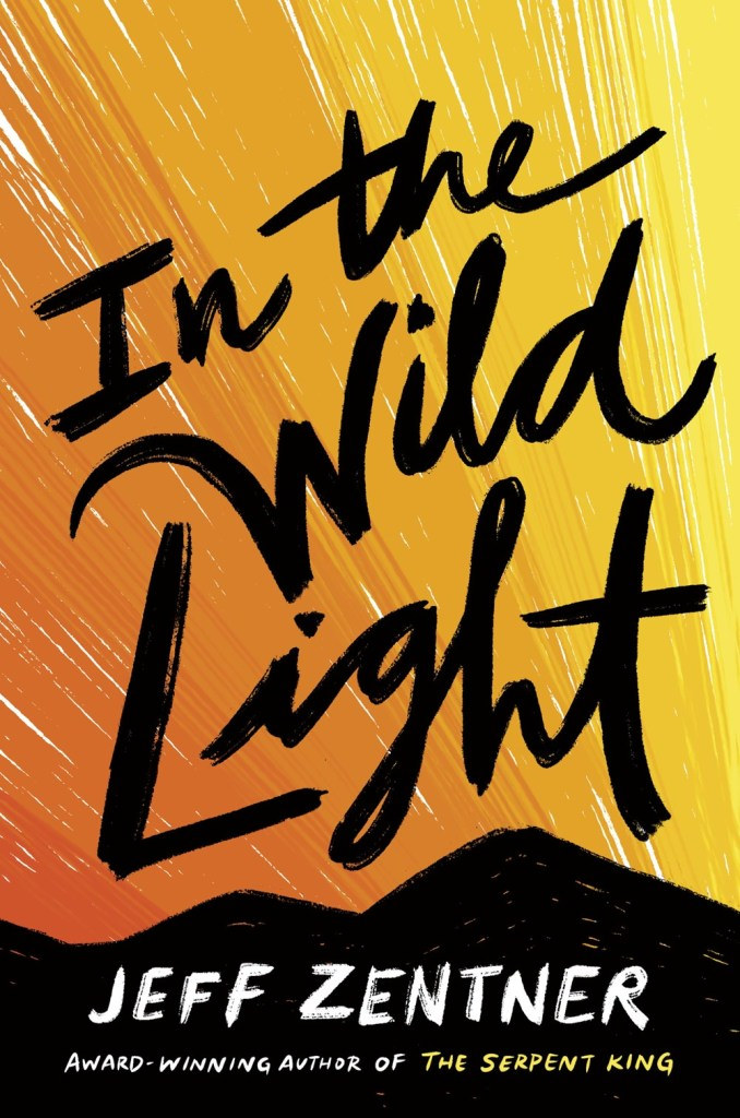 Into the Wild Light